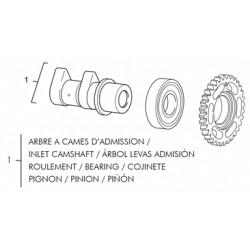 1- ARBOL LEVAS ADMISION